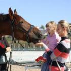 Лечебная верховая езда Иппотерапия